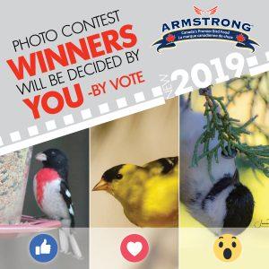2019 - Contest Vote
