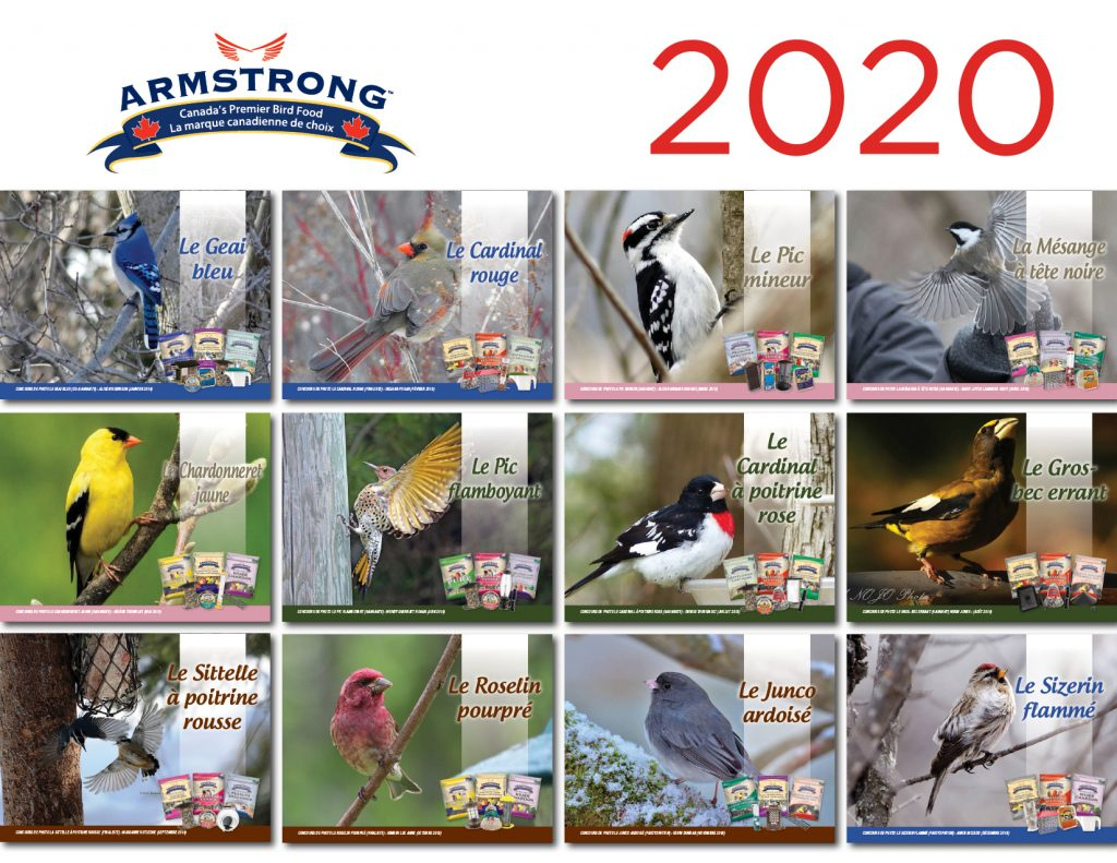 2020_ArmstrongCalendar_FR - 12 Birds of the Month collage